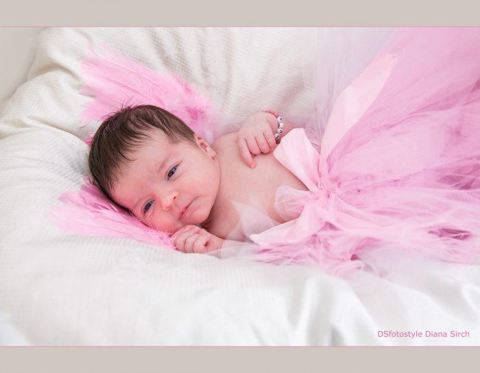 Charlotte – Prinzessin in rosa!